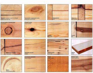 primery-defektov-drevesiny-320x250-6588199