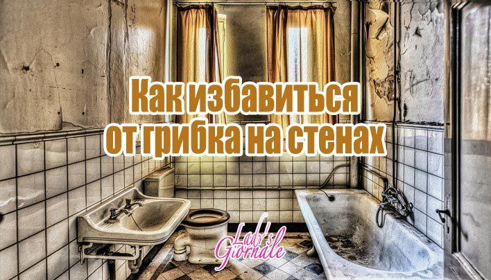 img_225-7580432