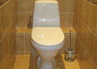 tualet-standart_1-6010728