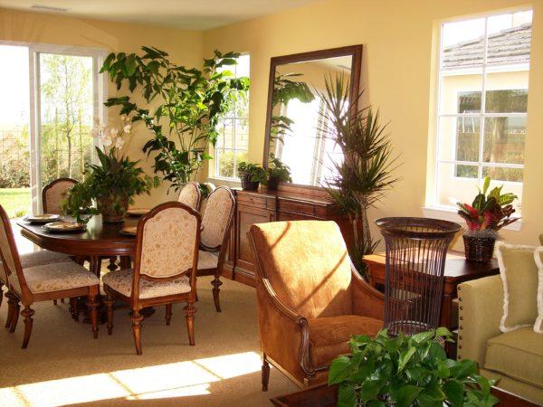 Живые растения и большие зеркала часто используют в современном декоре