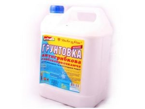 gribok-na-potolke_1-300x225-9031380