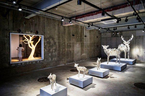 освещение выставок