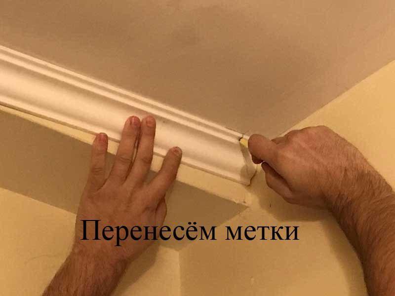 plintusc-7369532