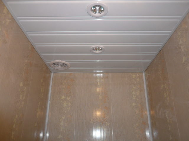 1445164945_potolok-tualet-6063236