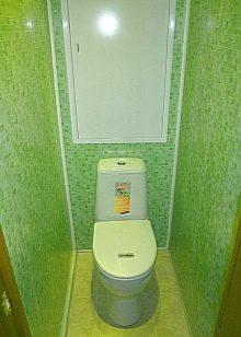 dizajn-tualeta-otdelannogo-plastikovymi-panelyami-1-8862380
