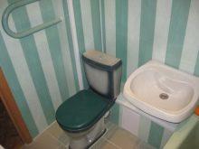 dizajn-tualeta-otdelannogo-plastikovymi-panelyami-15-3843586