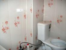 dizajn-tualeta-otdelannogo-plastikovymi-panelyami-31-7378362