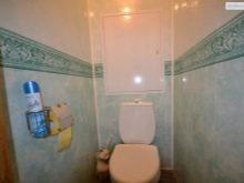 dizajn-tualeta-otdelannogo-plastikovymi-panelyami-32-7967427