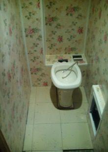 dizajn-tualeta-otdelannogo-plastikovymi-panelyami-35-9372109