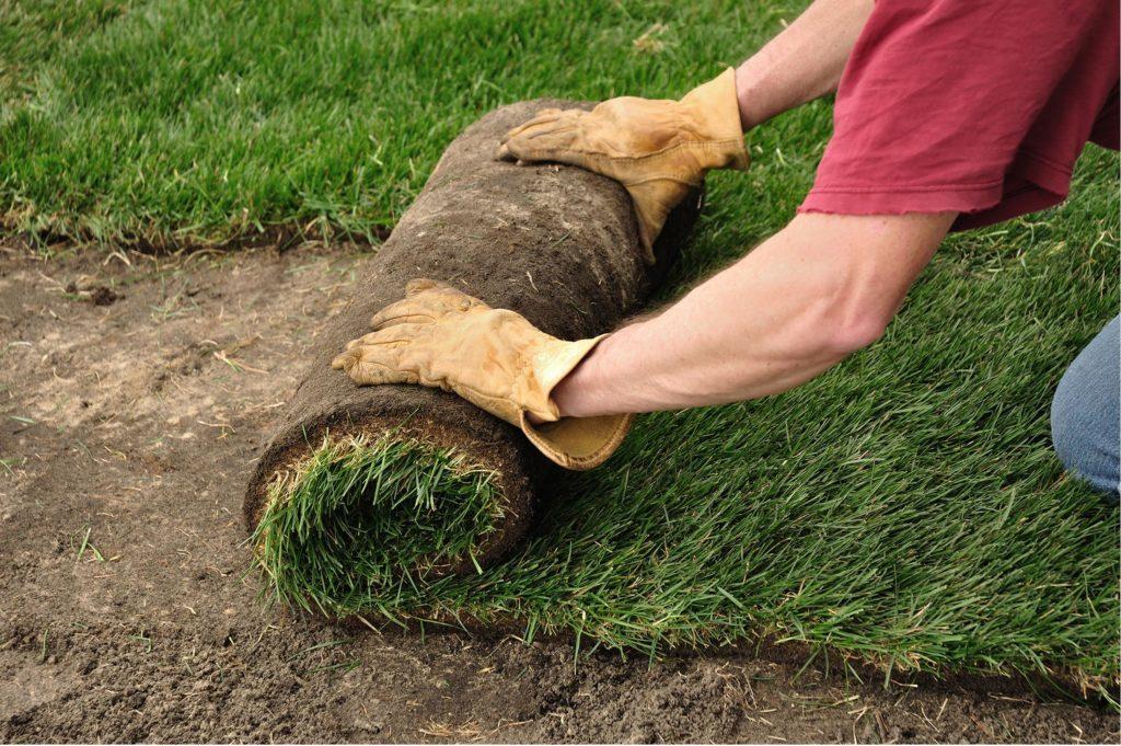 terrassement-exterieure-compagnie-excavation-dagenais1-1024x681-7531043
