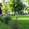 landshaftniy_dizayn_rovnogo_uchastka-3227618