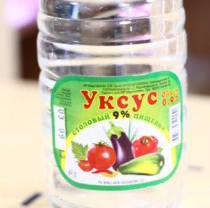 vinegar-300x297-7017091