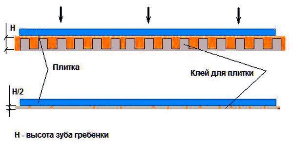 sloy-kleya-posle-prizhatiya-4180376